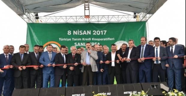 Bakan Çelik, 3 Bölge Müdürlüğünün Açılışını Yaptı