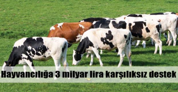 """Yıldız,""""Türk hayvancılığı güçlenmeli"""""""