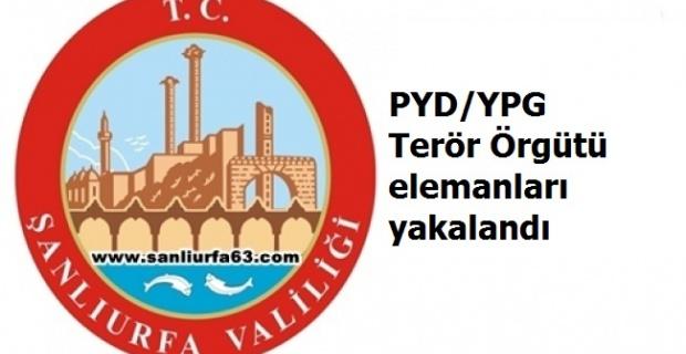 PYD/YPG Terör Örgütü elemanları yakalandı.