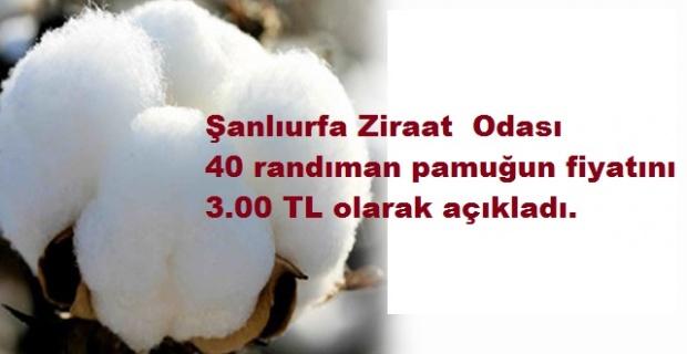 """Eyyüpoğlu: """"Çiftçimizin hakkını kimse yiyemez"""""""
