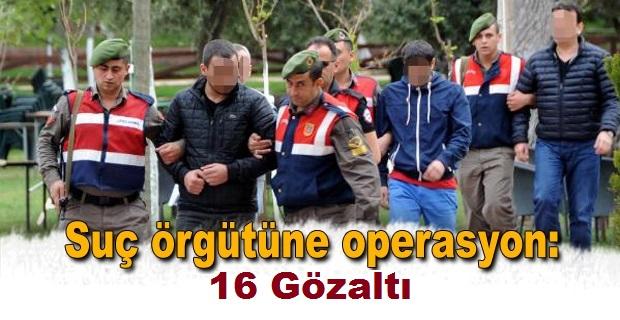 Şanlıurfa Merkezli Suç Örgütüne Operasyon