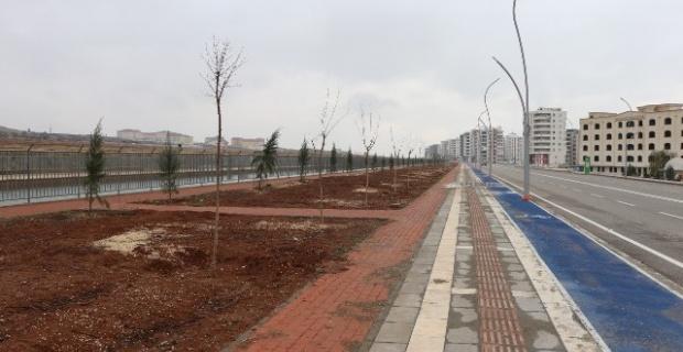 Büyükşehir Belediyesi,Yeşil alan çalışmalarına ağırlık veriyor
