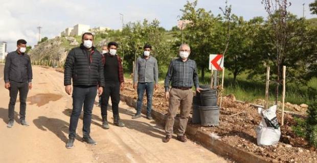 Mardin Valisi Yaman,ağaçlandırma ve çevre düzenleme çalışmalarını inceledi.