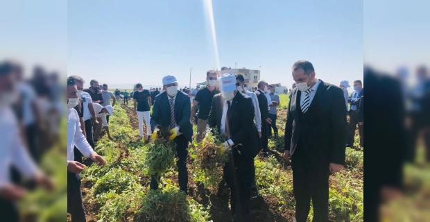 Başkan Geliş,çiftçilere yeni sezonun hayırlı olması diledi.