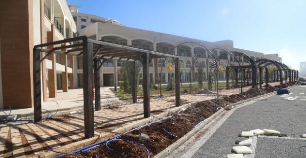 'Yeşil Koridor Projesi'nde sona gelindi.