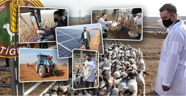 Bakan Pakdemirli, TİGEM Ceylanpınar Tarım İşletmelerinde bir dizi incelemede bulundu