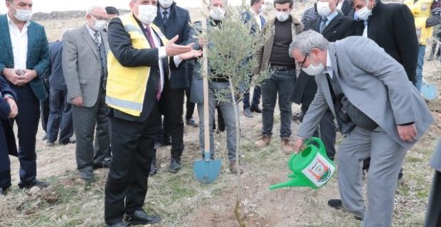 """Başkan Beyazgül ''Biz bugünden ağaç dikerek gelecek nesillere hazırlık yapıyoruz"""""""