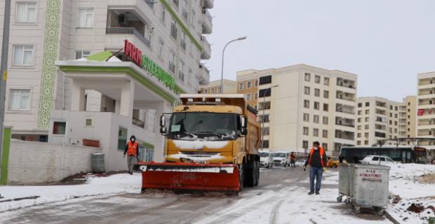Şanlıurfa Büyükşehir Belediyesi çalışmalarına maşuk bölgesinde devam etti.