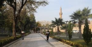 Büyükşehir'den dezenfekte,ilaçlama ve mama desteği