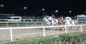 Akçakale Belediye Başkanlığı Kupası At Yarışı Koşusu, bu akşam saat 20.30'da