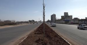 Şanlıurfa-Akçakale yolunda yaşanan trafik sorunu çözüme kavuşturuldu